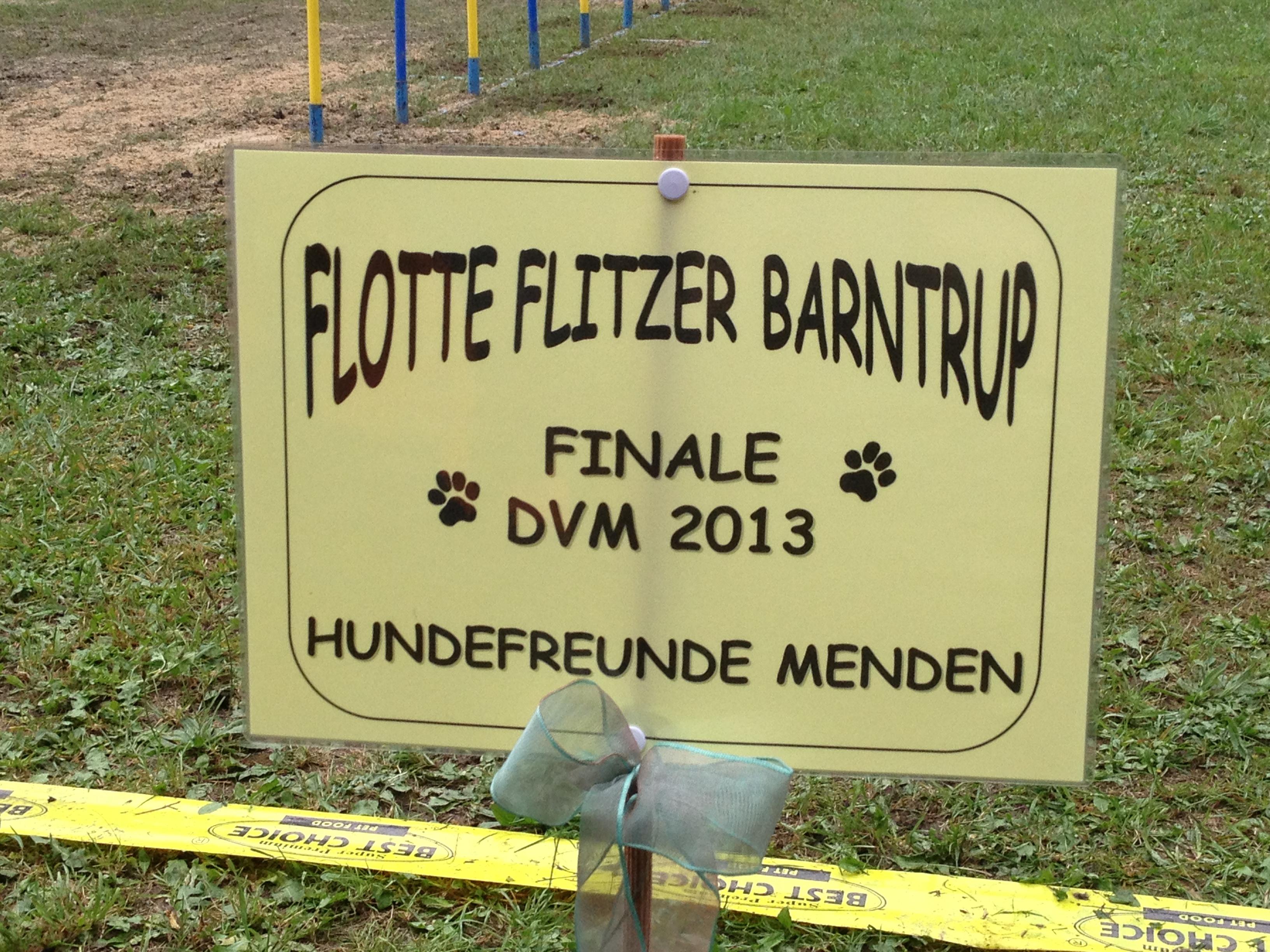 Deutsche Vereinsmeisterschaften Finale